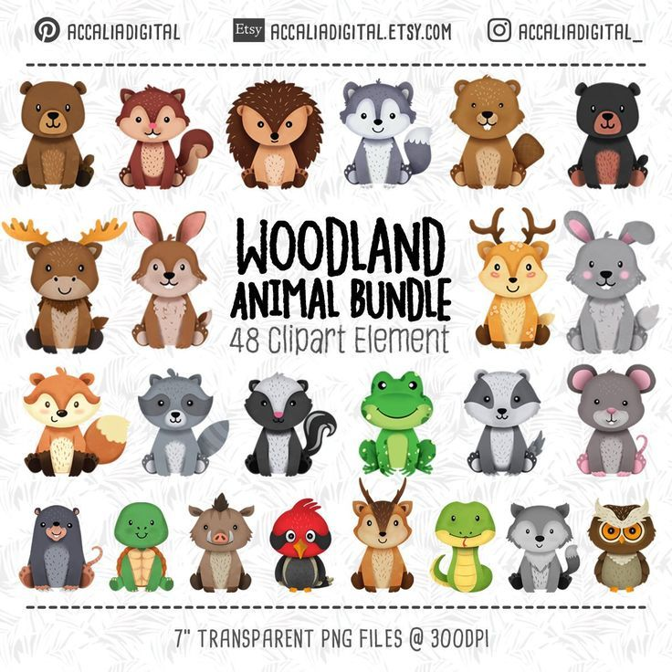 Woodland Animals Clipart Forest Friends Animal Buddies Woodland Nursery Decor Woodland Animal Baby Woodland Baby Shower Animal Clipart Woodland Animals Cute Animal Clipart