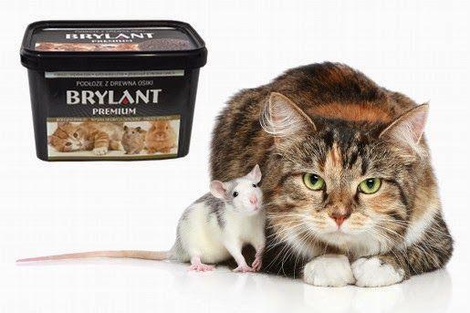 Brylant Premium – Osikowa ściółka dla zwierząt domowych