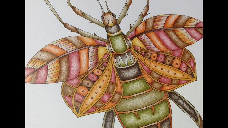 Book: magical jungle by Johanna Basford Pencils: prismacolor pencils (150) Sharpener: dahle 133 Thanks for watching ! Website: juliebouve.wordpress.com Faceb...