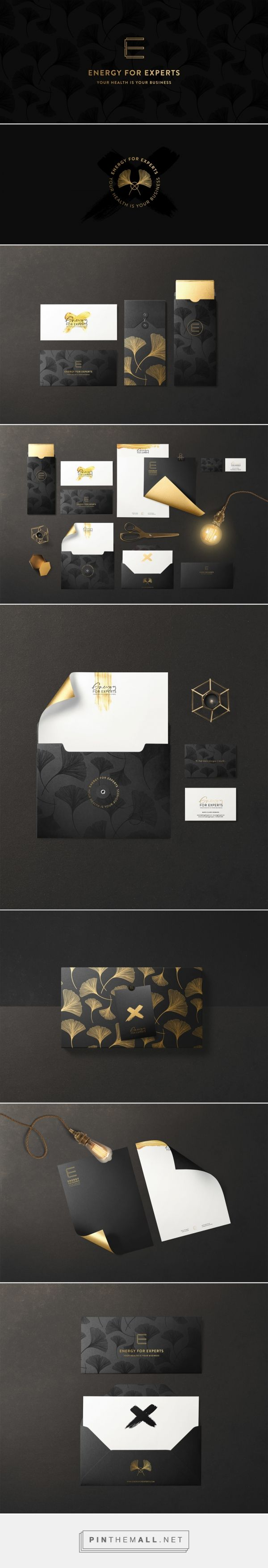 Energy for Experts Branding By Cocorrina | Fivestar Branding – Design and Branding Agency & Inspiration Gallery