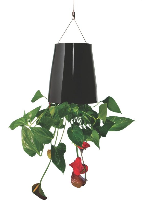 Sky Planter Ceramic Black Medium
