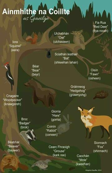 Animals in Irish Gaelic