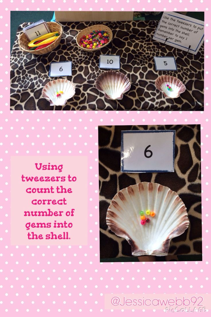 Count the correct number of beads into the shells. EYFS