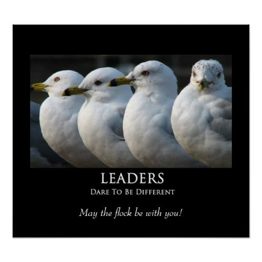 >>>Low Price Guarantee          LEADERS - Motivational Poster           LEADERS - Motivational Poster today price drop and special promotion. Get The best buyShopping          LEADERS - Motivational Poster Review from Associated Store with this Deal...Cleck Hot Deals >>> http://www.zazzle.com/leaders_motivational_poster-228754924547480320?rf=238627982471231924&zbar=1&tc=terrest