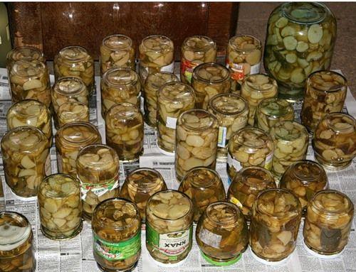 Салат маринованные грибы курица яйца