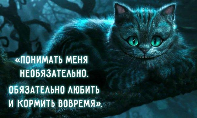 30 мудростей Чеширского Кота
