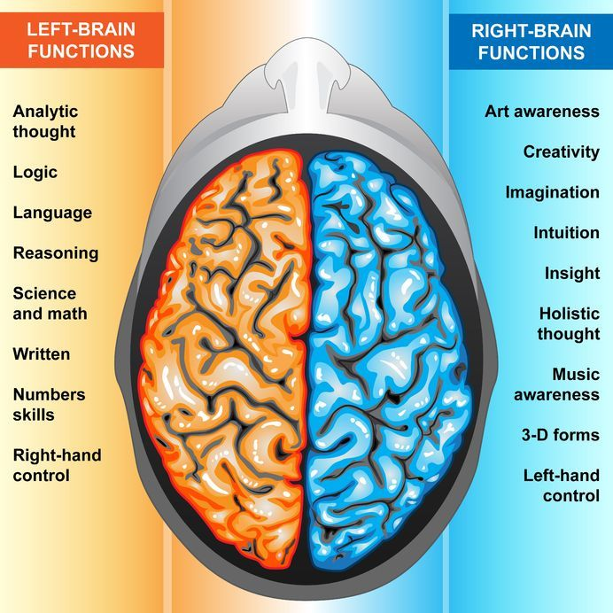 left vs right brain essay What's the difference between left brain and right brain left-brained people are supposed to be logical, analytical, and methodical, while right-brained people are.