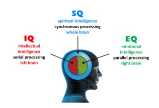 """Is """"Spiritual Intelligence"""" a Valid Concept? :  Inspired by Gardners concept of multiple intelligences the concept of spiritual intelligence has gained popularity in recent years and is the subject of several books and websites. Although limited empirical"""