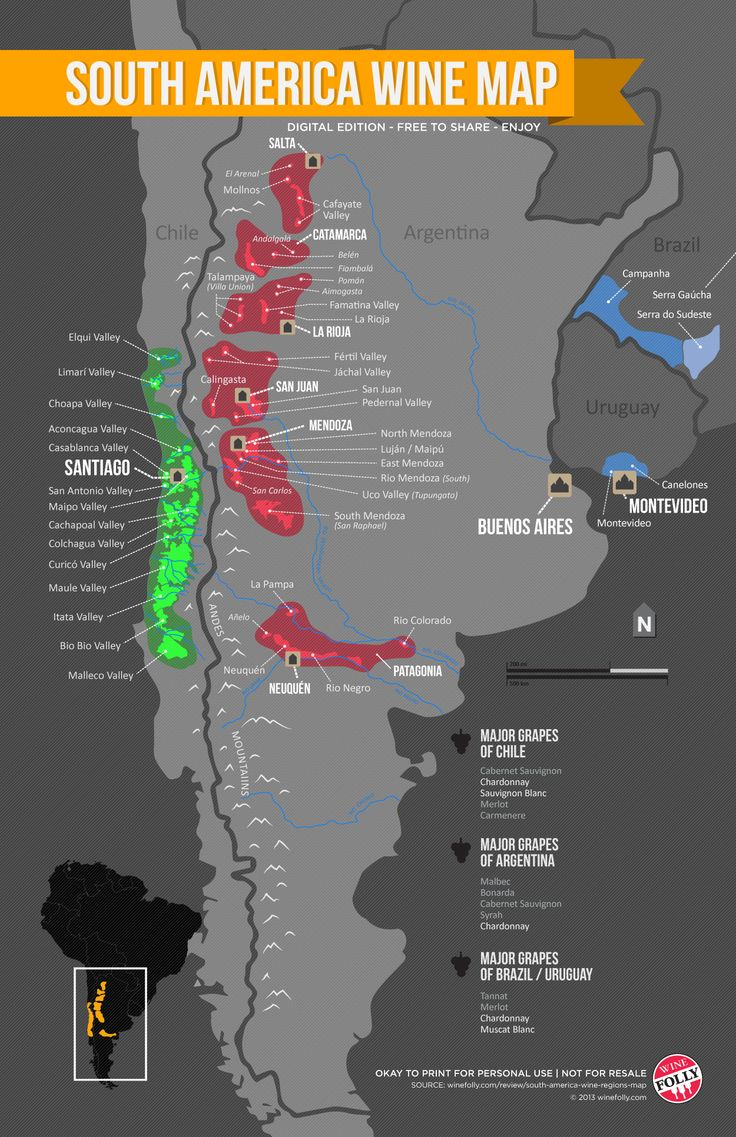South America - Chile and Argentina - Wine Map by Wine Folly