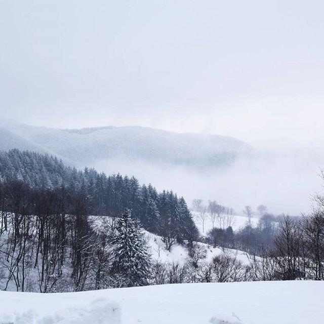 2017.01.22_atmosfera ghiacciata  #trekking #mountains #mountainismytherapy #nature #white #snow #winter #ciaspole #sundaymorning #landscape #withfriends #appenninopasseggiando #appennino #prettyromagna #emiliaromagna #italy #loves_emiliaromagna #volgoforlicesena #ig_forli_cesena