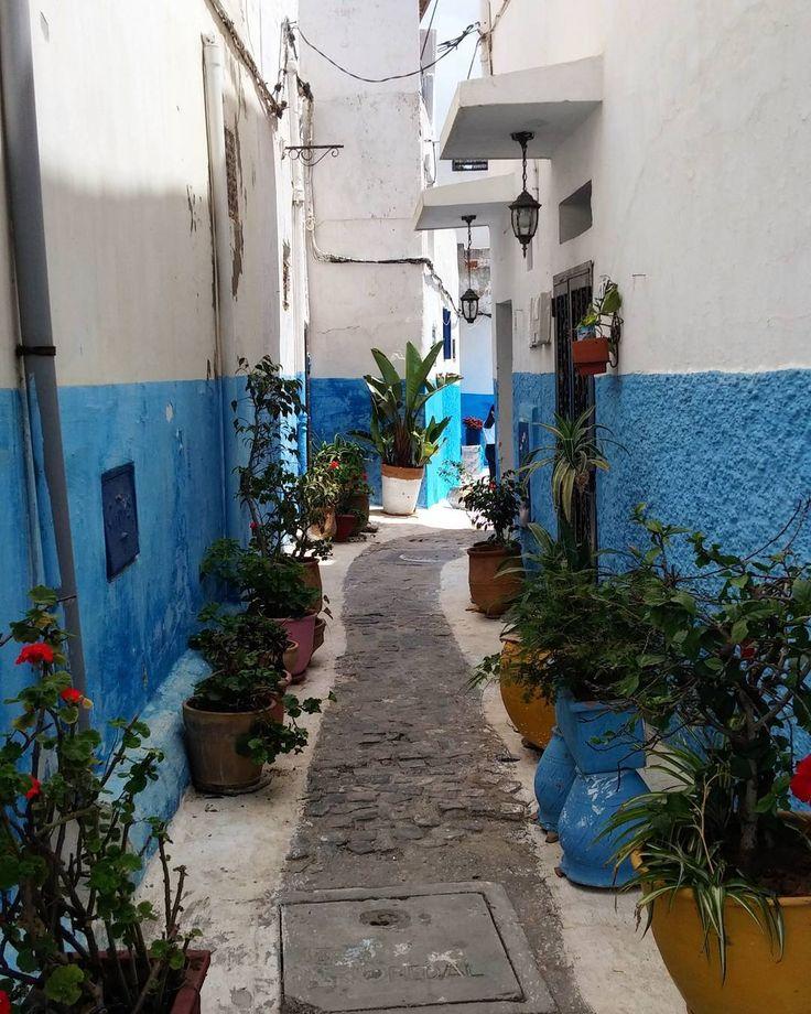 Un petit air de Chaouen... . . . . . . . . . . . . .  #kasbah #bleu #rue #street #Rabat #kasbahoftheudayas #igersmaroc #igersmarroco #marroco #maroc #travel #traveler #instatravel #instamoment #trip #instatrip #explore #exploretheworld