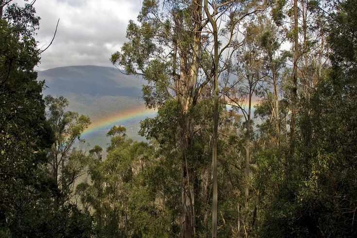 Rainbow, Mount Field National Park, Tasmania, Australia