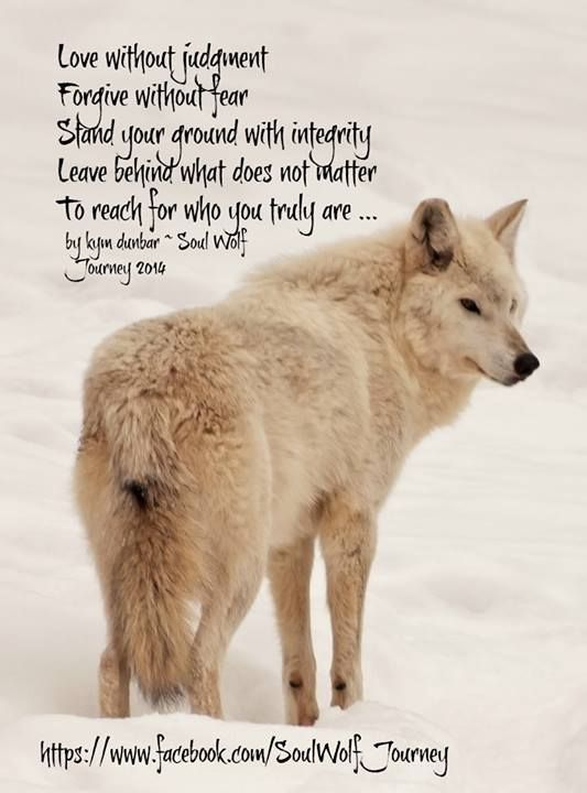Love without judgment, forgive without fear, stand your ground with integrity. Leave behind what does not matter, to reach for who You truly are . . . ~ Soul wolf