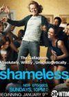 Watch Shameless Online free
