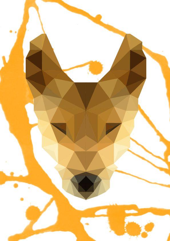 Geometrical Dingo