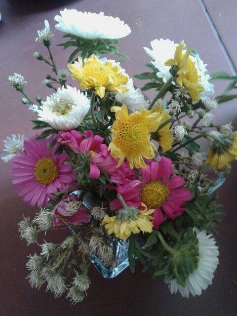 Mis flores de colores
