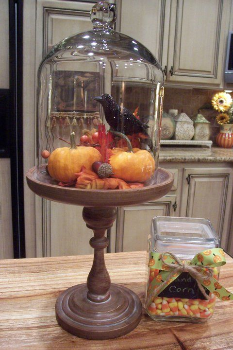 halloween cloche; Jackson square pedestal and tall glass dome…