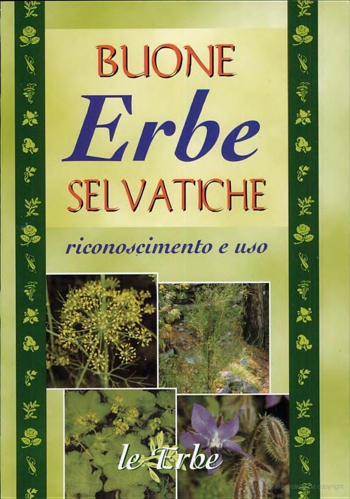Best 68 libri ideas on pinterest book book markers and bookmarks buone erbe selvatiche riconoscimento e uso google libri fandeluxe Image collections