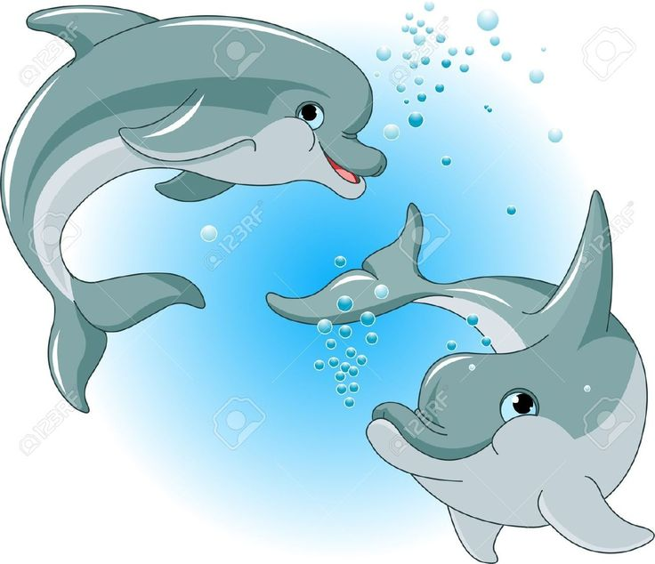 17 Best images about delfines para Delfina on Pinterest   Dolphins ...