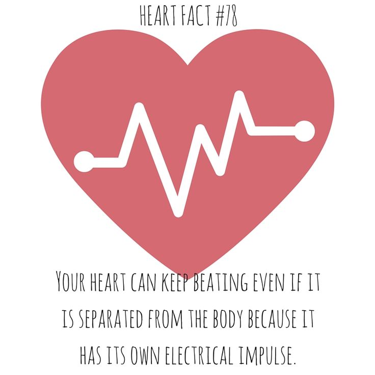 73 best Heart Facts images on Pinterest | Heart facts ...