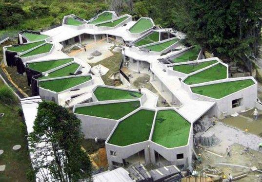 Cellular green roofed pajariro jardin infantil la aurora for Jardin infantil
