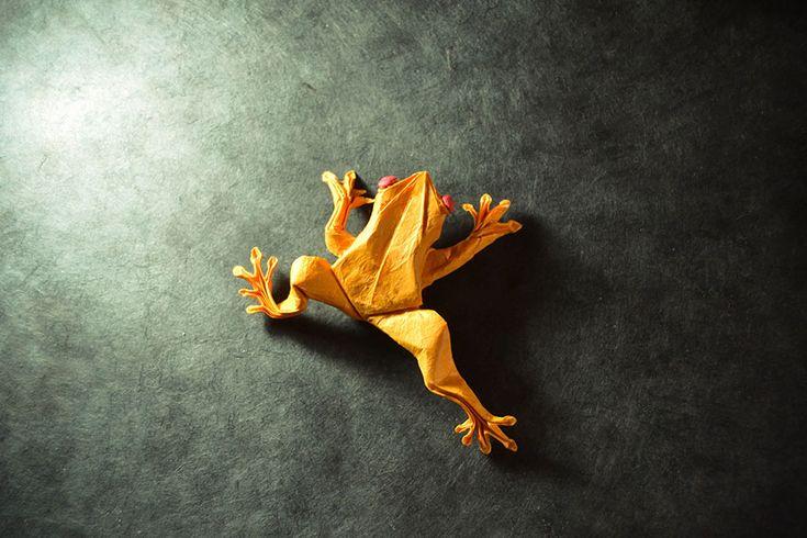 origami-gonzalo-garcia-calvo-122-57fb56864471f__880-1