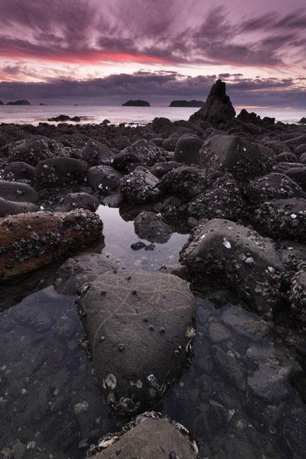 Stills Photo Tours, David Still - New Zealand, Coromandel Coast