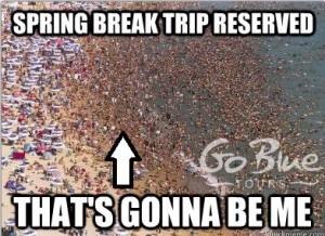 Spring Break Memes Go Blue Tours Spring Break Destinations Families Family Spring Break Spring Break Trips