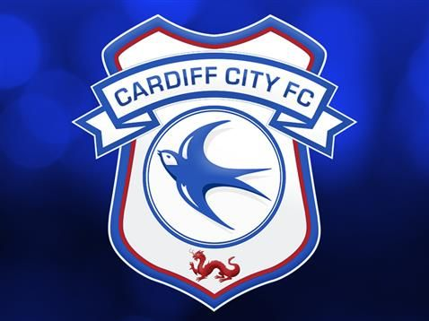 CARDIFF CITY 2015 CREST REVEAL