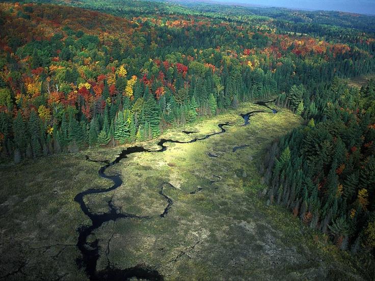 Algonquin Provincial Park. Ontario