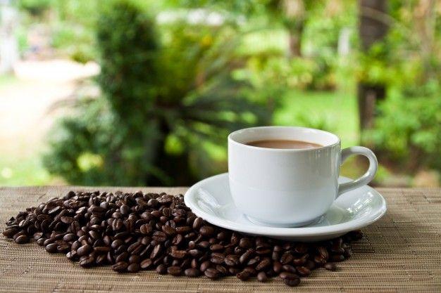 семян сервис чучела фарфора семян кофе Бесплатные Фотографии