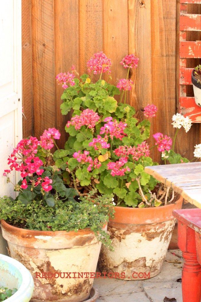 66 Best Images About Outdoors Diy Pots On Pinterest Cement Planters Plastic Flower Pots And