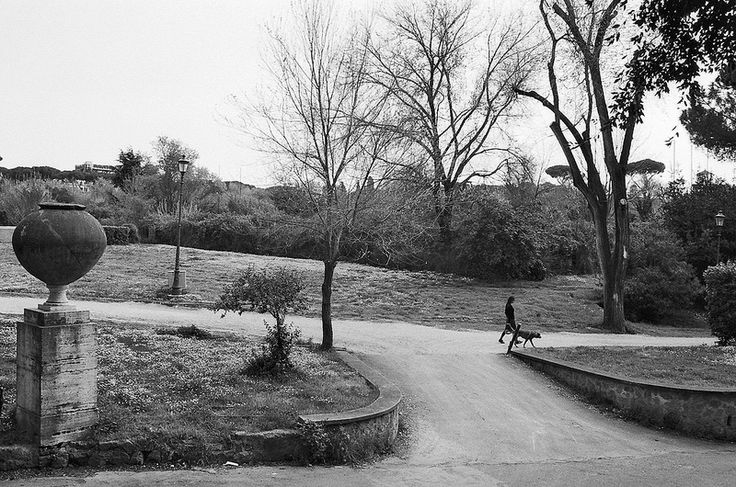 villa borghese series / 35mm film / analog
