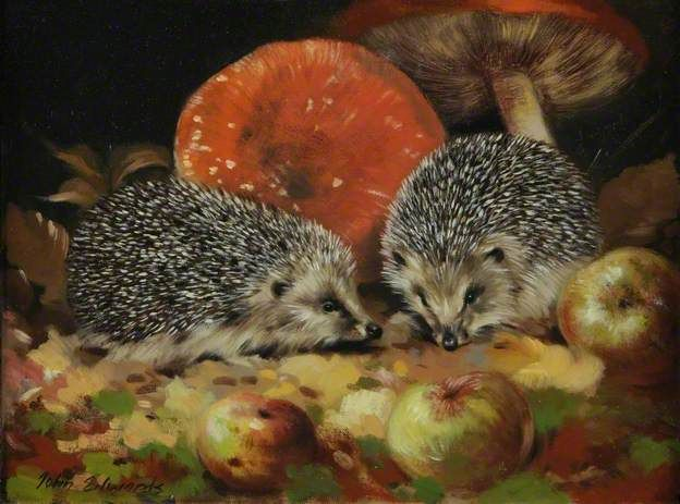 Young Hedgehogs and Toadstools Love this John Edwards Painting