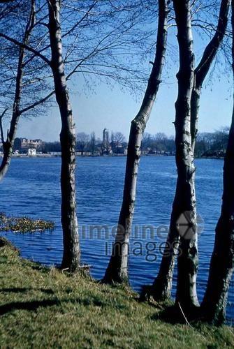 Spree in Fürstenwalde, 1956 Juergen/Timeline Images #blau #bunt #farbenfroh #Natur #Bäume #Fluss #50er #Brandenburg
