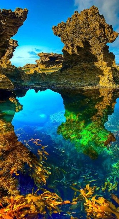 Morning at Sorrento Back Beach on Mornington Peninsula in Australia • photo: Jason Green on Redbubble