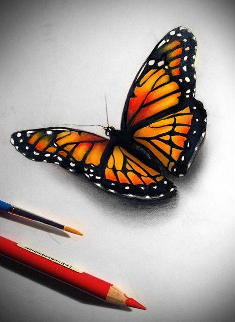 Monarchvlinder Vlinders and Vlindertattoos on Pinterest