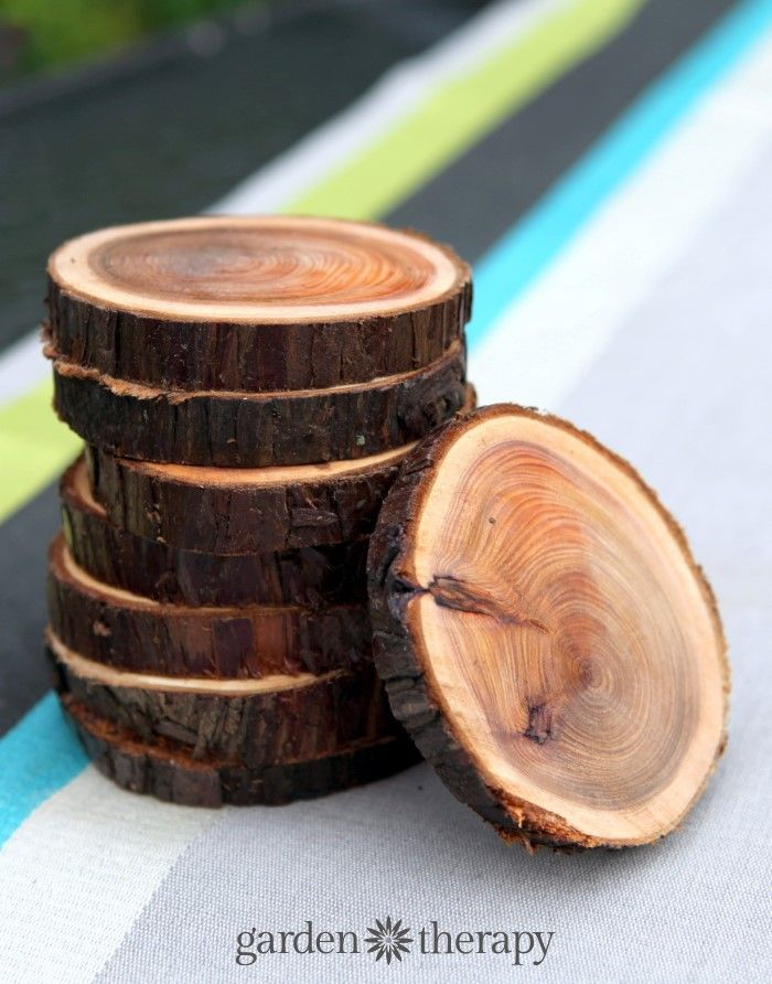 Natural Branch Coasters Diy Crafts For Adults Wood