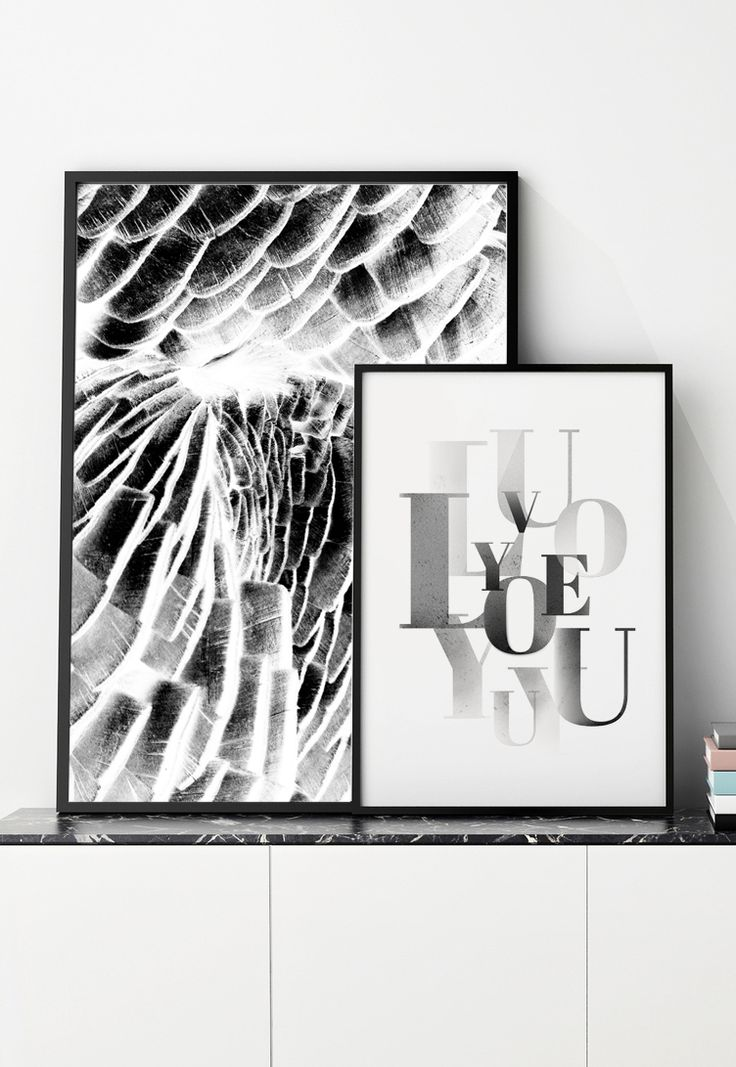 typography, parrot, black&white, https://www.facebook.com/printlovee