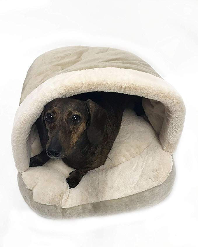 Amazon Com Midlee Cave Pet Bed For Small Dogs Cats 21 X 16 Beige Pet Supplies Small Dogs Dog Cat Pet Bed