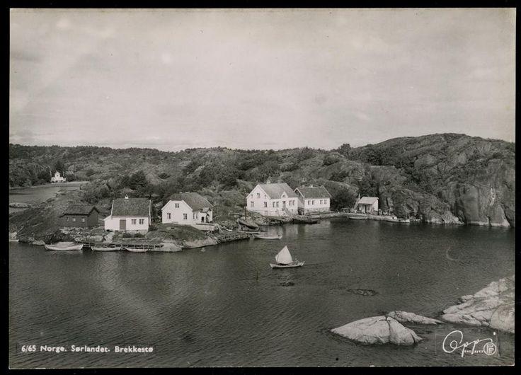 Aust-Agder fylke Lillesand kommune Justøya Brekkestø. Nærmotiv av stedet sett fra sjøen.1960 Utg Oppi