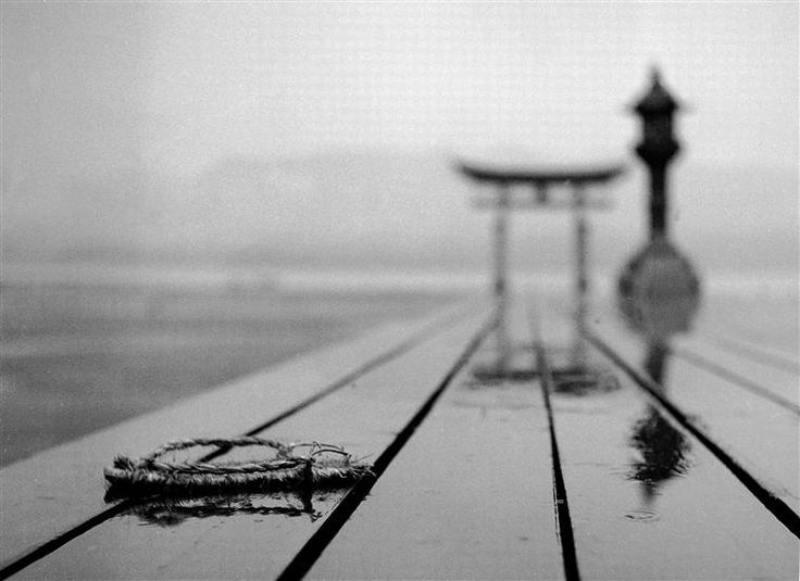 Fosco Maraini - Rain and a Forgotten Sandal at the Miyajima Sanctuary, 1953  For some reason this image is incredibly compelling...
