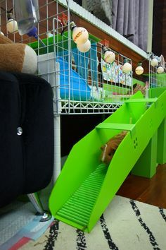 DIY Guinea pig stair …