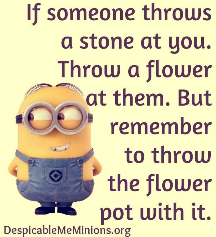 Minions Flowers, stones. See my Despicable Me Minions pins https://www.pinterest.com/search/my_pins/?q=minions