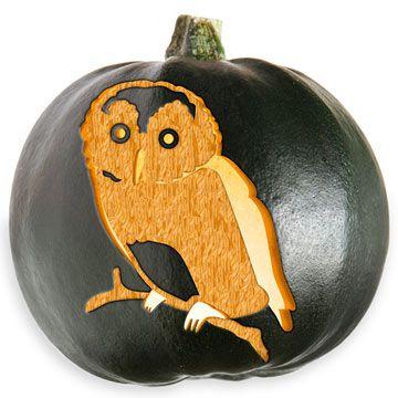 owl pumpkin stencil | Driven By Décor: Free Pumpkin Carving Patterns & Templates