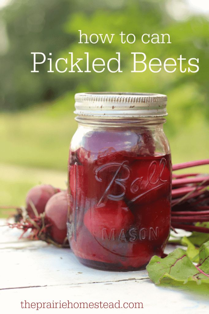 how to can pickled beets recipe