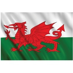 Fly the flag for St David's Day! http://www.partypieces.co.uk/special-occasions/saints-day-celebrations/st-davids-flag.html