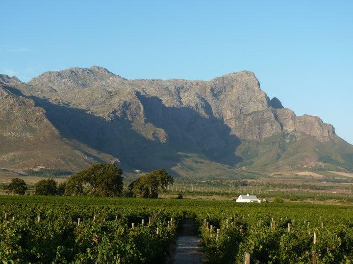 Akkerdal wine estate