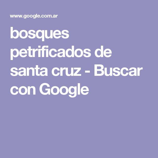 bosques petrificados de santa cruz - Buscar con Google