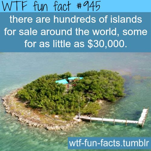 private islands for sale - facts  MORE OF WTF-FUN-FACTS are coming HERE  funny and weird facts ONLY